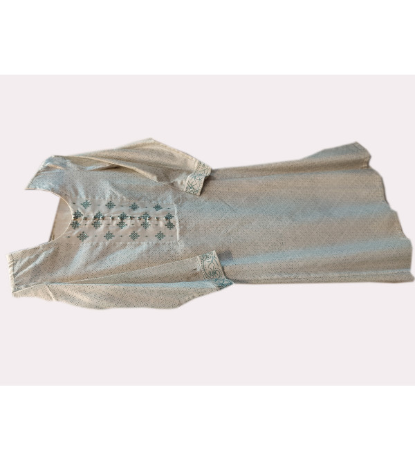 Tanchoi Silk Handwoven Banarasi Long Kurtis