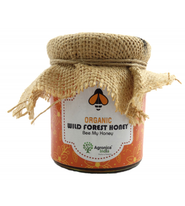 ORGANIC WILD FOREST HONEY  225 GMS