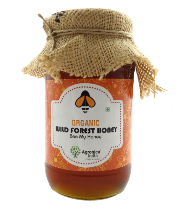 ORGANIC WILD FOREST HONEY  500 GMS