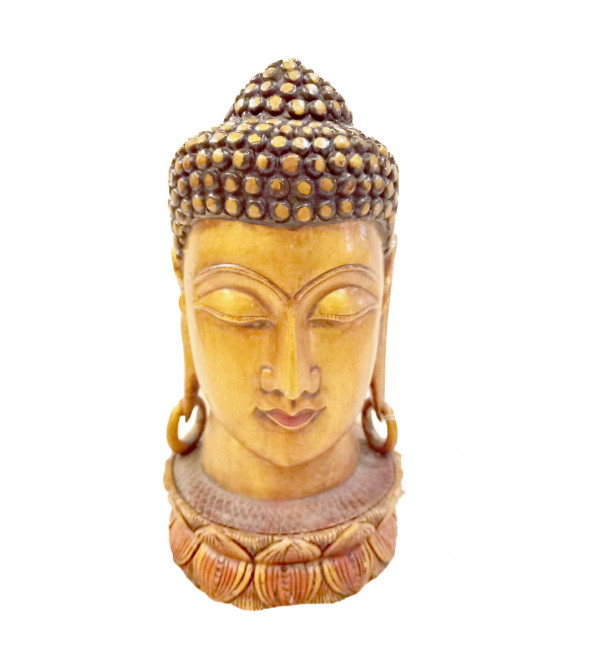 BUDDHA HEAD 8 inch in wood