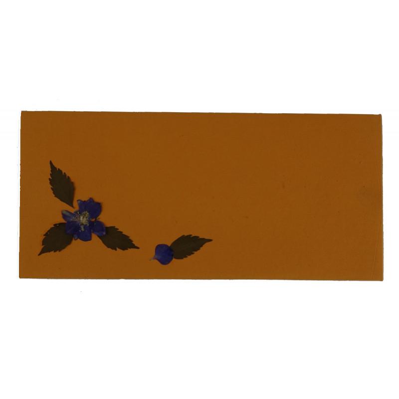 Gift Envelope 10 Pcs Set 3.5x7.5 Inch