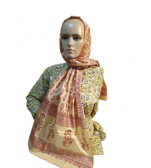 CCIC Tussar Silk Printed Stole Size 22x72 Inch