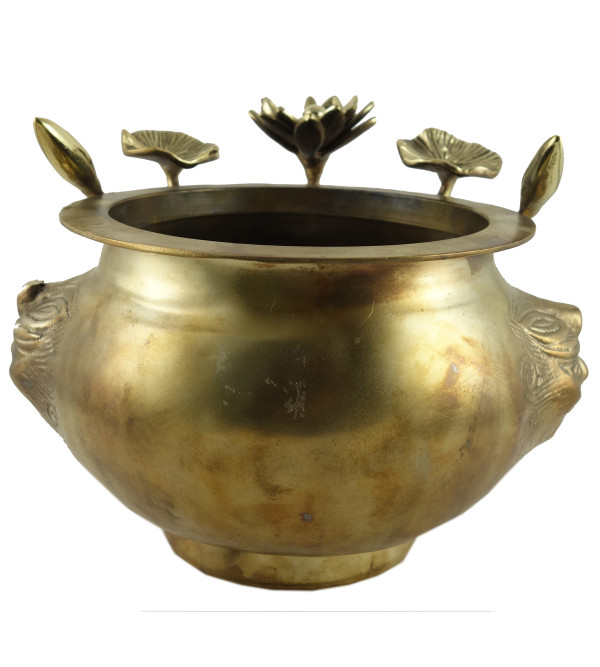 Planters Handcrafted In Brass Size 7 Inches