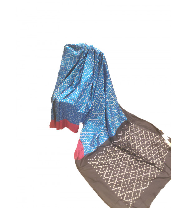 Andhra Ikat Silk Handwoven Saree With Blouse