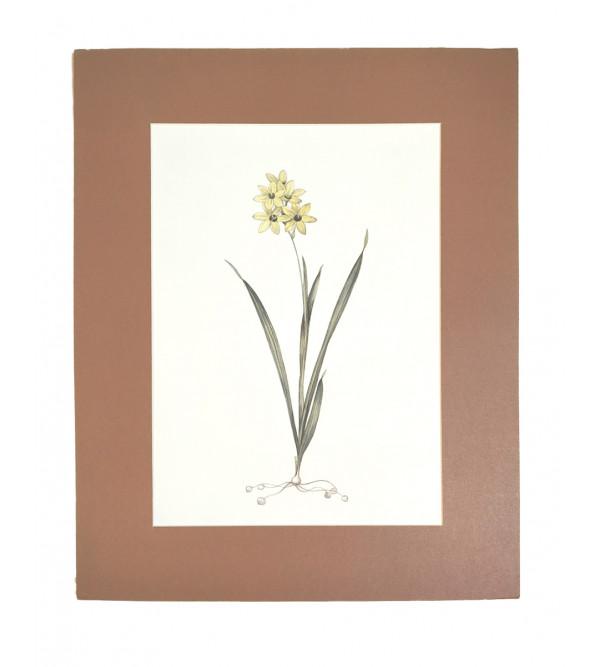 Traditional Flowers Handmade Painting