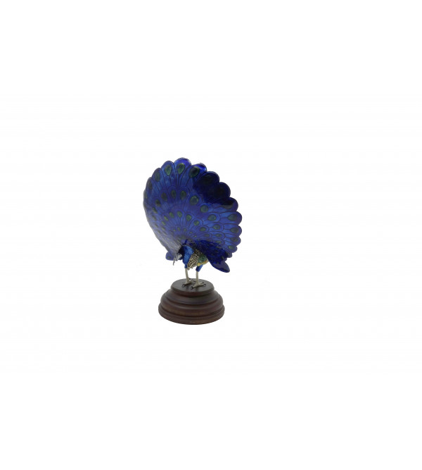 COPPER ENAMELED BIRD Dancing Peacock 4 Inch
