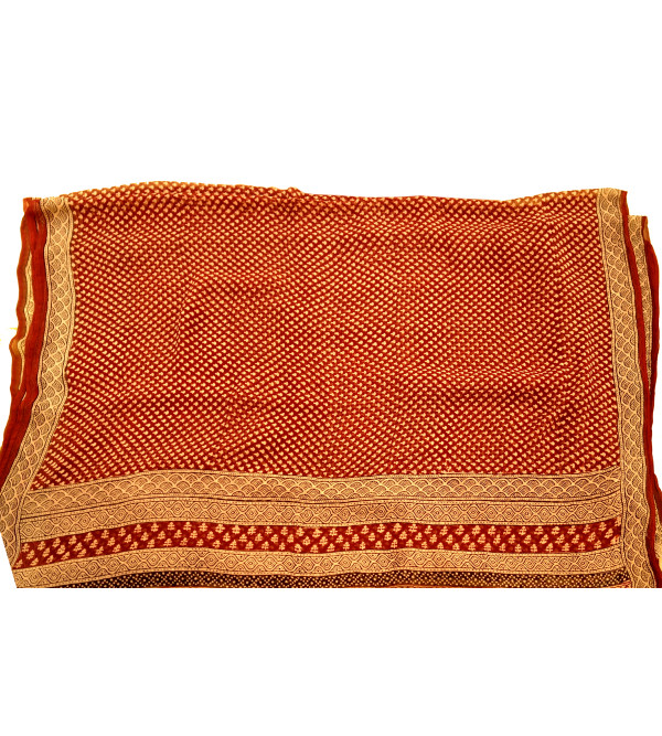 BAGH PRINT SHIFFOEN SAREE